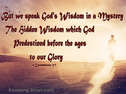 GRACE WISDOM - 1